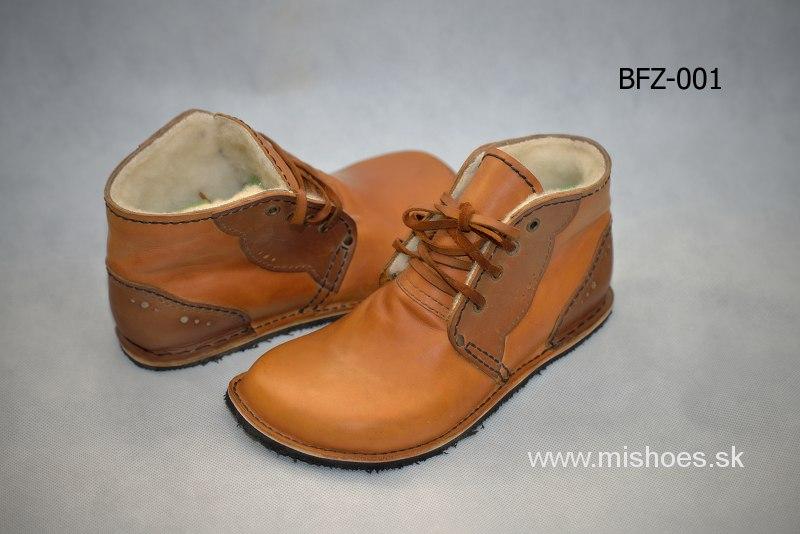 bfz-001_1