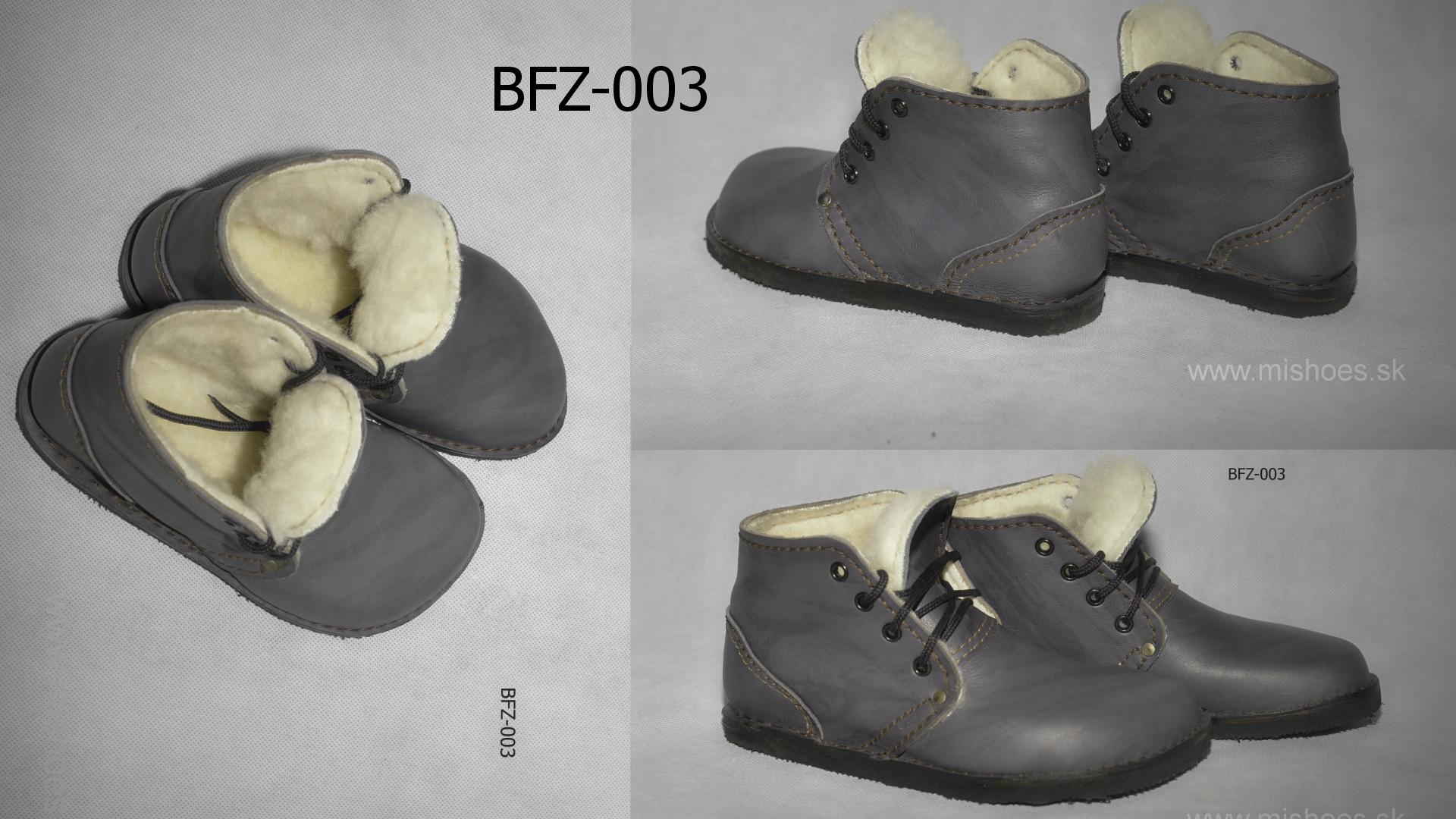 bfz003